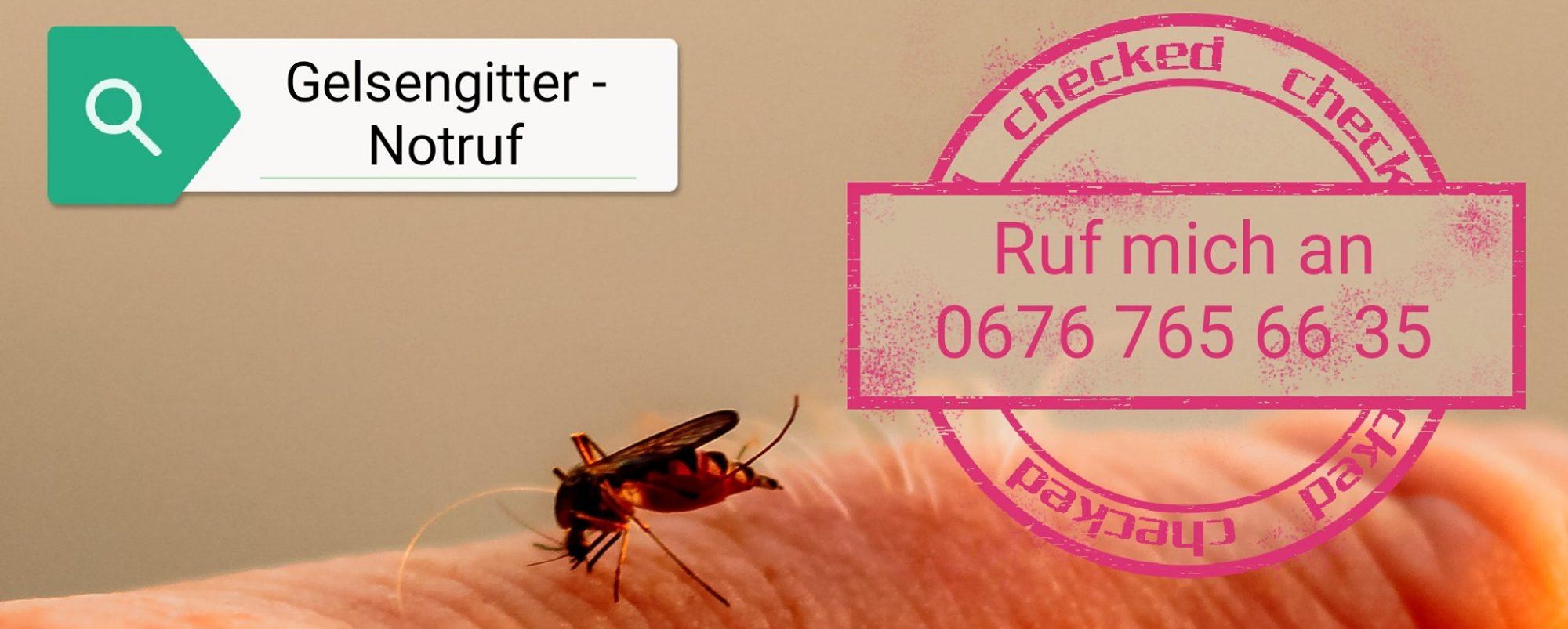 GELSENGITTER-Notruf  0676 / 765 66 35