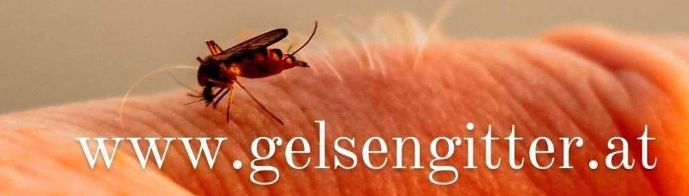 GELSENGITTER-Notruf          0676 765 66 35